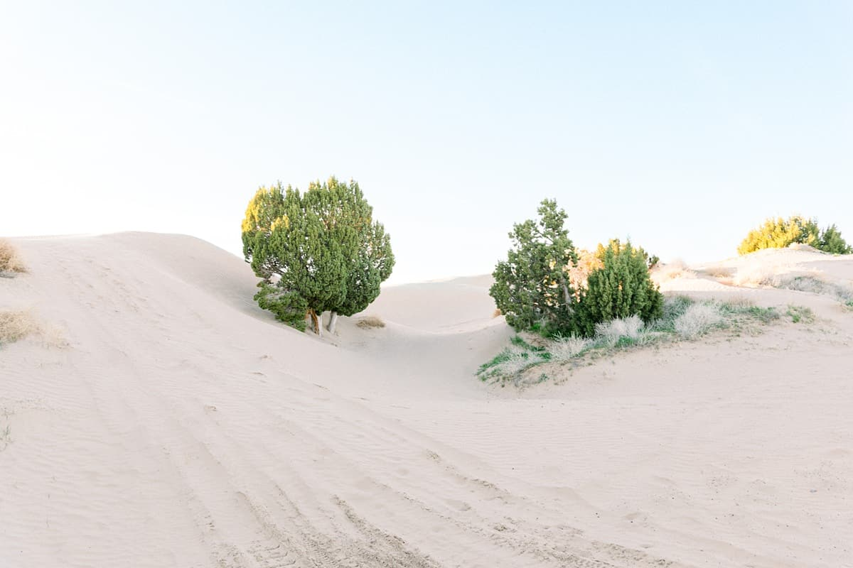 Utah desert, landscape nature photography