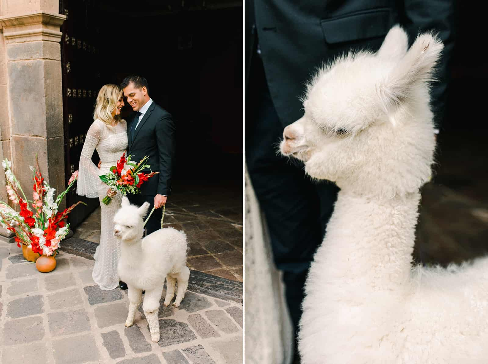 Cusco Peru Destination Wedding, travel wedding photography, Plaza de Armas red flowers boho wedding, bride and groom with white alpaca llama