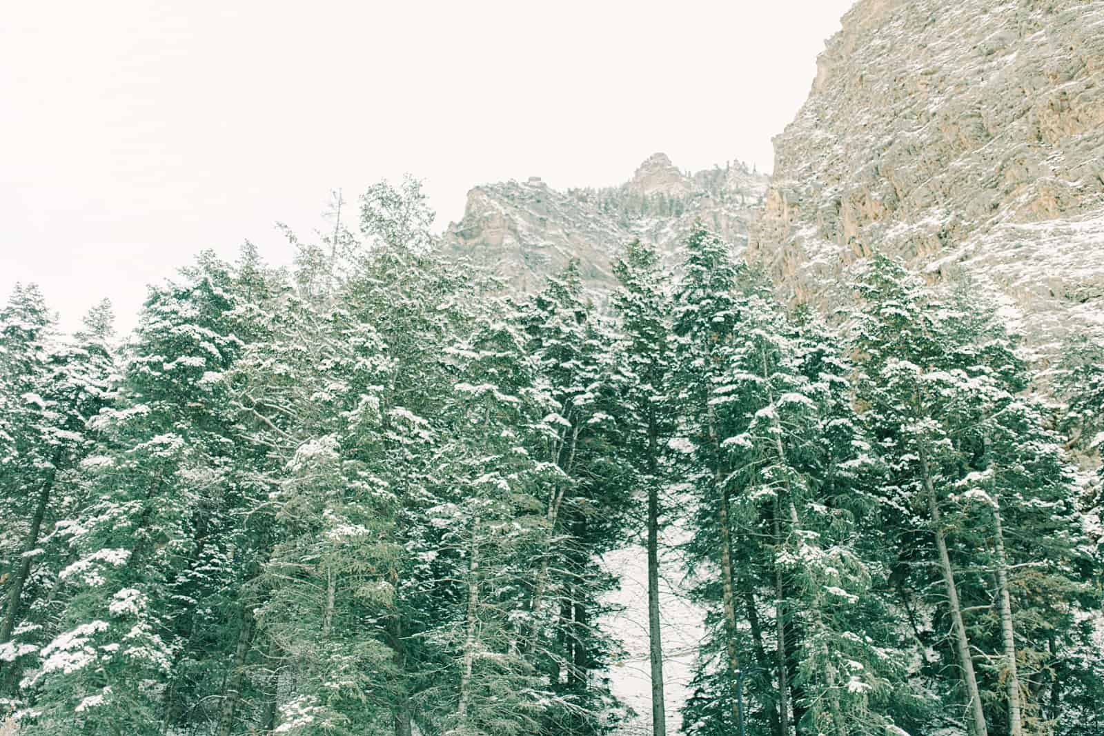 Utah winter in the mountains